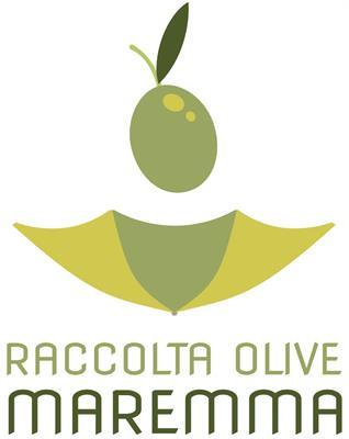 Raccolta olive con macchina scuotitrice
