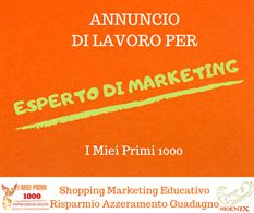 Esperto di Marketing Online